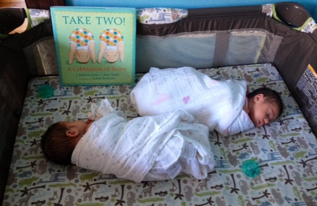 Sofia and Francine received Take Two: A Celebration of Twins by J. Patrick Lewis and Jane Yolen as a gift from my friend Pat Harris. It is such an adorable collection of poems and pictures for twins!